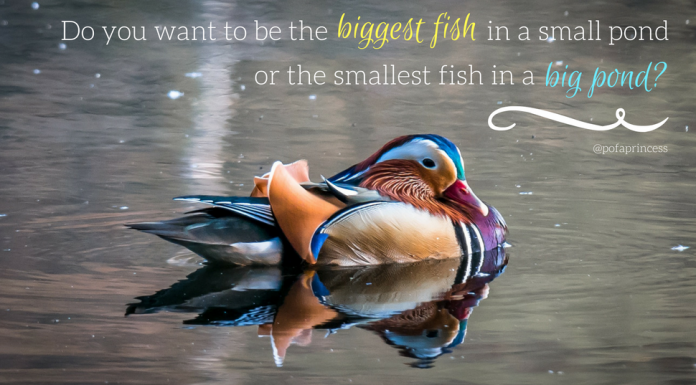 challenge yourself to be the smallest fish